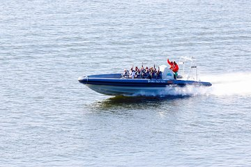 Helsinki Excursion: Private Helsinki Archipelago High-speed Boat Cruise
