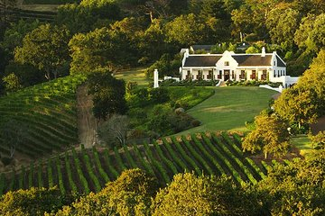 56 Tours and Activities to Experience Groot Constantia