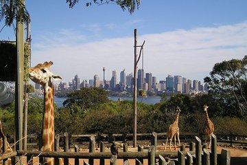 Top Sydney Nature & Wildlife | Lowest Price Guaranteed | Viator