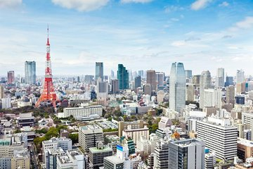 Dynamic Tokyo: Tokyo Tower, Tea Ceremony and Sumida River Cruise Day Tour