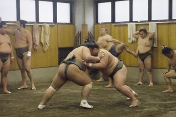 Sumo stable Morning Training Watching Tour