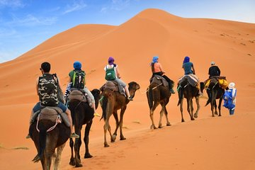 Luxury Private 4-Day Camel Trekking and Kasbah Trail from Marrakech