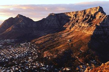 Cape Town City Tour Half-Day