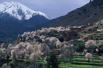 Atlas Mountains and 4 Valleys Private Tour from Marrakech