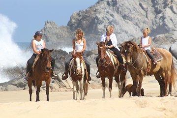 Pacific Horseback Riding Tour in Cabo San Lucas