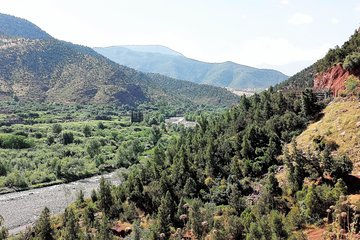 Private Day Tour to Ourika Valley including Guided Hike and Lunch from Marrakech