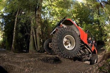 Monster 4x4 Thrill Ride At Off Road Nz 2020 Rotorua