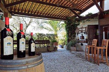 Private Organic Wine & Provence Food Tasting Tour