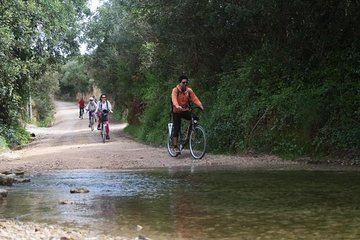 Small-Group Adventure: Cycling in Ria Formosa Natural Park