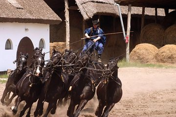 Horse show with lunch near Budapest with private transport
