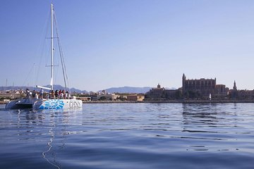 Palma Bay: Catamaran Sailing Day with Meal included