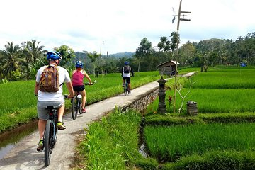 Half-Day Electric Bike Tour of Ubud Tickets