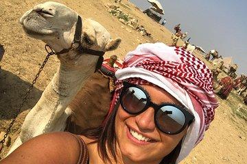 Save 10.00%! 2 Hour Camel Ride Around Giza Pyramids Gate