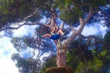 Mallorca Forestal Park Entrance Ticket