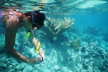 Private Tour: Batam Island Reef Snorkel and Kayak Day Trip from Singapore