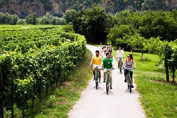 Wachau Valley Small-Group E-Bike Tour