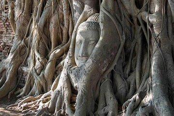 Klassische Tour nach Ayutthaya