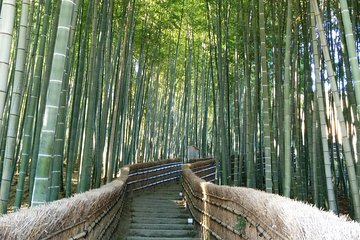 Private Highlights of Kyoto Tour
