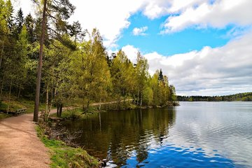Oslo Nature walks: Forest to Fjord Tickets