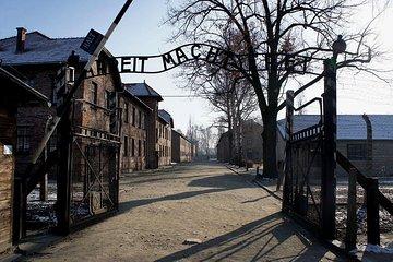 Auschwitz-Birkenau and Salt Mine Full day tour