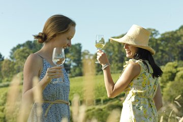 Yarra Valley Wine Tour with Local Harvest Tastings from Melbourne