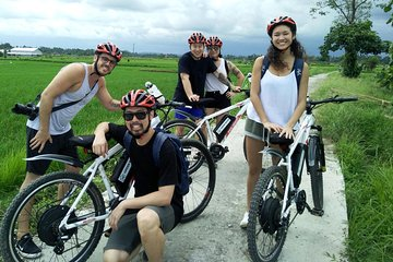Electric bicycle tour in Jatiluwih UNESCO site