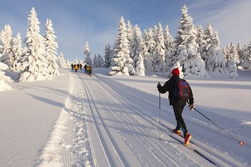 Cross-Country Ski Rental in Lake Tahoe