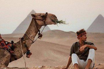 Save 10.00%! Giza pyramids ,sphinx, Sakkara, Memphis and Dahshur day tour