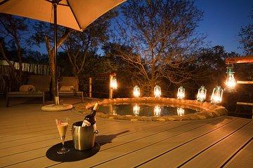 5 Day Katekani Lodge Kruger National Park Safari