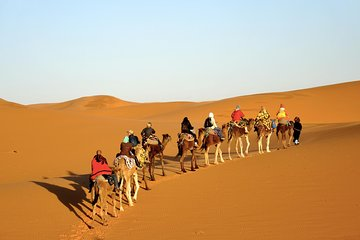 Private 5 days Tour to Merzouga and The Oasis and Great South from Marrakech