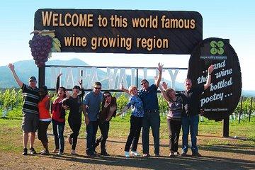 Small-Group Wine-Tasting Tour through Napa Valley