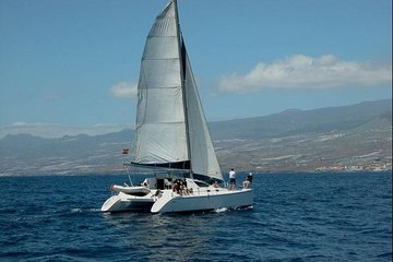 Luxury 3 Hour Catamaran Sailing In Tenerife