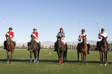 Polo Match, BBQ and Lesson Day-Trip from Buenos Aires