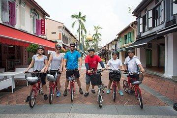 Small-Group Singapore Highlights Bike Tour