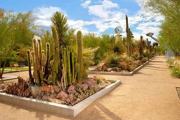 Skip the Line: Springs Preserve in Las Vegas Admission Ticket