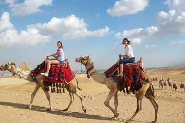 Layover Tour from Cairo Airport to visit the Pyramids Private