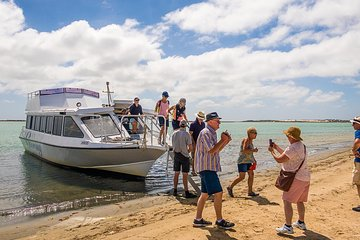 THE TOP 10 Adelaide Cruises, Sailing & Water Tours (w/Prices)