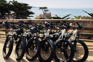 The 10 Best Monterey & Carmel Tours, Excursions & Activities
