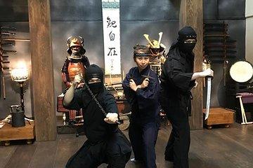 Private 90-Min. Elite Ninja or Samurai Experience: Stealth Walk, Shuriken, Sword