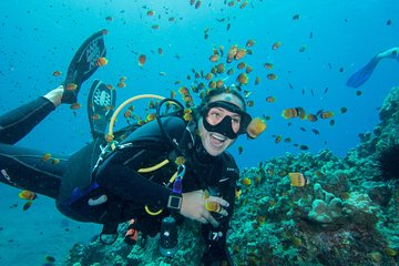 Maui Scuba Diving Introductory Lesson from Lahaina