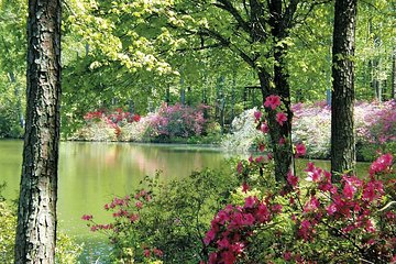 Skip the Line: Callaway Gardens Daily Admission Ticket