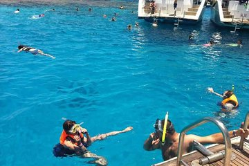 Tiran Island Snorkeling Day Trip from Sharm el Sheikh