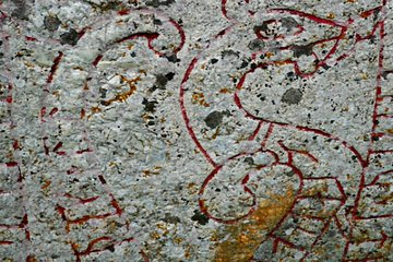 Viking History Small-Group Trip from Stockholm including Sigtuna and Uppsala: Full Day