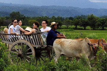 Full-Day Local Countryside Experience from Bangkok