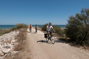 Panoramic Bike Tour: Castles and the Highs of Malaga