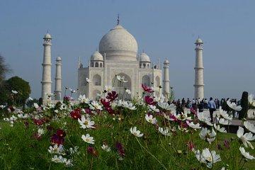 Taj Mahal Tickets & Tours