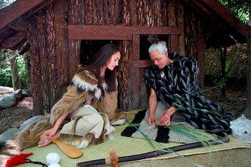 Christchurch Maori Concert and Kiwi Viewing
