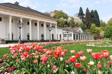 Black Forest and Baden-Baden Day Trip from Frankfurt Tickets