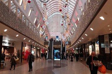 Reykjavik Shopping Tour