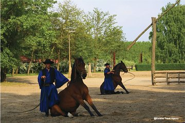 Budapest Puszta Day Trip to Kecskemet icluding Horse Show & Lunch